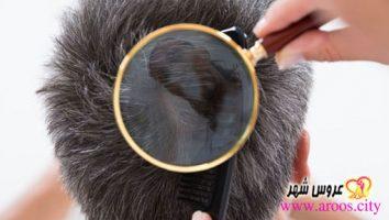 بهترین روش ترمیم مو چیست؟
