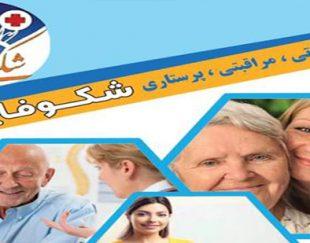 شرکت خدماتی مراقبتی شکوفایی